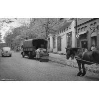 PSS Sopot rozwozi chleb transportem konnym, połowa lat 50. XX w. Autor Ryszard Petrajtis