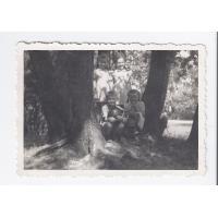 Na tle drzew przy hotelu Eden pozują Anna i Elżbieta Geyer z kuzynostwem, Sopot 1950 r.