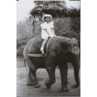 Krystyna Łubieńska pozuje na słoniu.