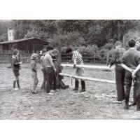 Klub Jeździecki Karola Rómmla, ustawianie przeszkód, w koszulce w paski Bogdan Kadłubowski, Sopot lata 60. XX w.