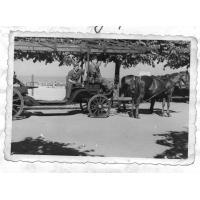 Ćwiczenia na molo, Sopot 1946 r.