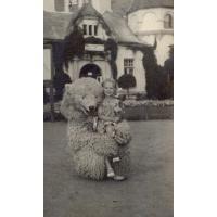 Teresa Zabża (z domu Misiołek) z misiem, Sopot lata 50. XX w.