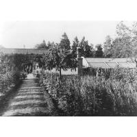 Pracownicy ogrodnictwa przy ul. Goyki w czasie II wojny światowej, Sopot