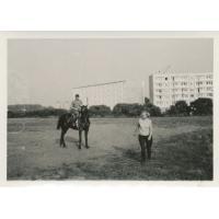 Plac na hipodromie. W tle bloki osiedla Żabianka, Sopot 1976 r.
